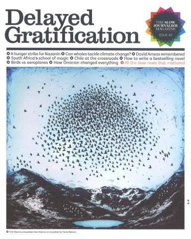 DELAYED GRATIFICATION Magazine