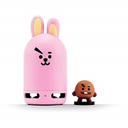* BT21 FRIENDS DUO BLUETOOH SPEAKER COOKY + SHOOKY