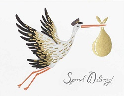 Special Delivery! Baby Stork Card Magazine