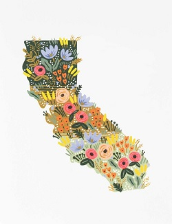 Floral California Wildflowers Card Magazine