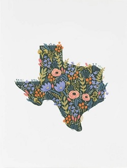 Floral Texas Wildflowers Card Magazine