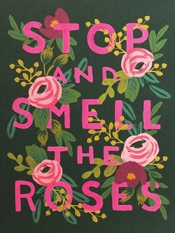 Stop And Smell The Roses Card